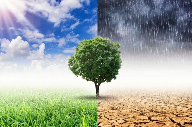 Groningen aan de slag met vergroening en klimaatadaptatie